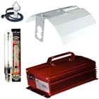 600W Digital Ballast Light Kit