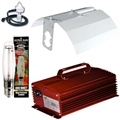 400W Digital Ballast Light Kit