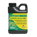 Thrive Alive B-1 Breen Concentrate 250ml