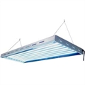 Sun Blaze T5 High Output Fluorescent Grow Light 4ft 8 Lamp